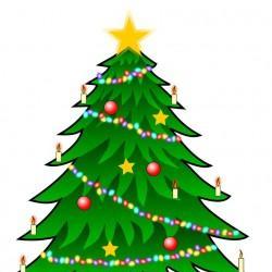 Ogłaszamy konkurs na bożonarodzeniową choinkę